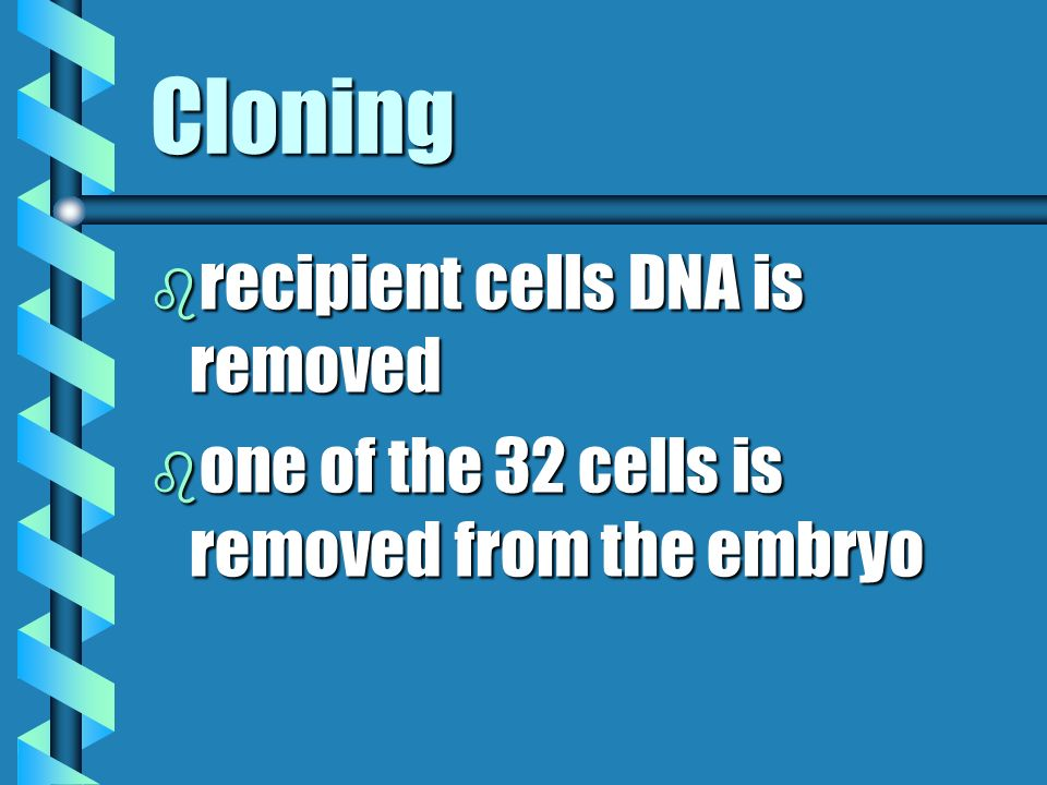 Cloning recipient cells DNA is removed