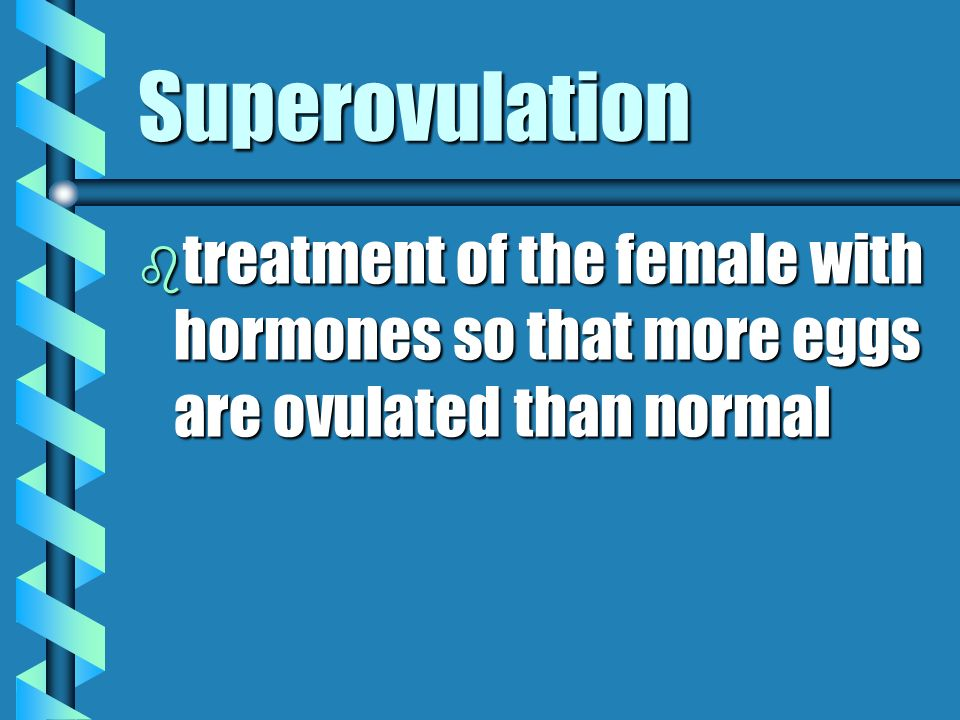 Superovulation treatment of the female with hormones so that more eggs are ovulated than normal