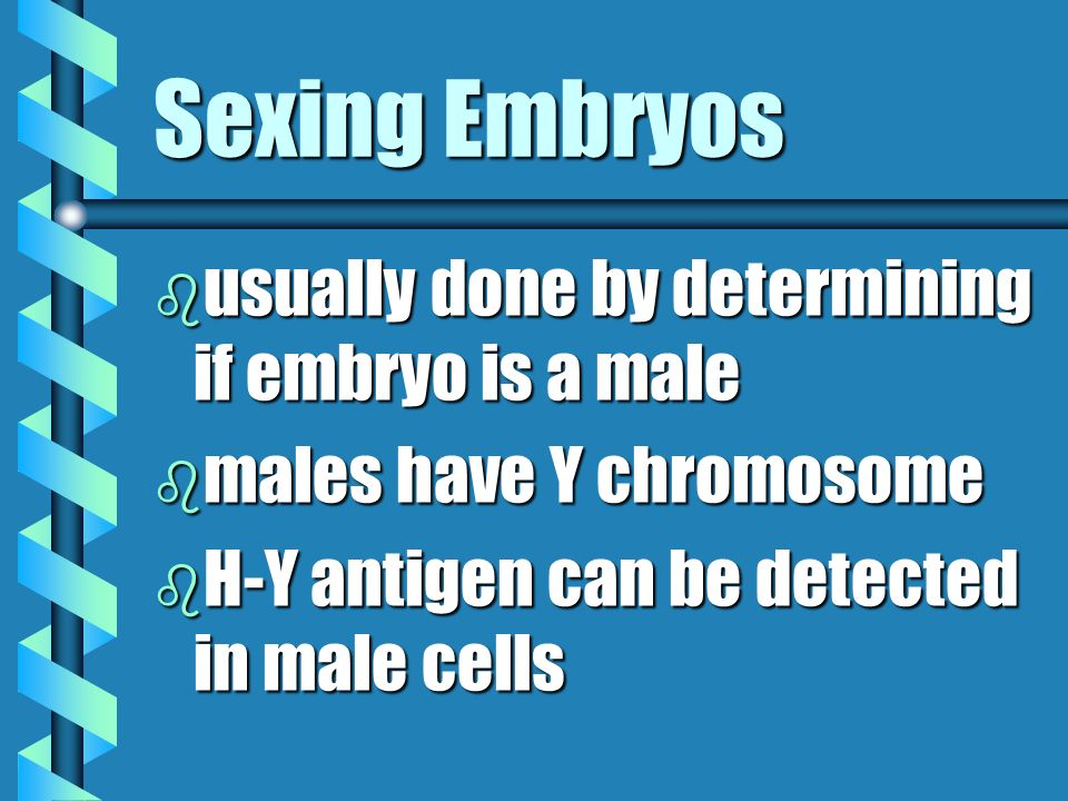 Sexing Embryos usually done by determining if embryo is a male