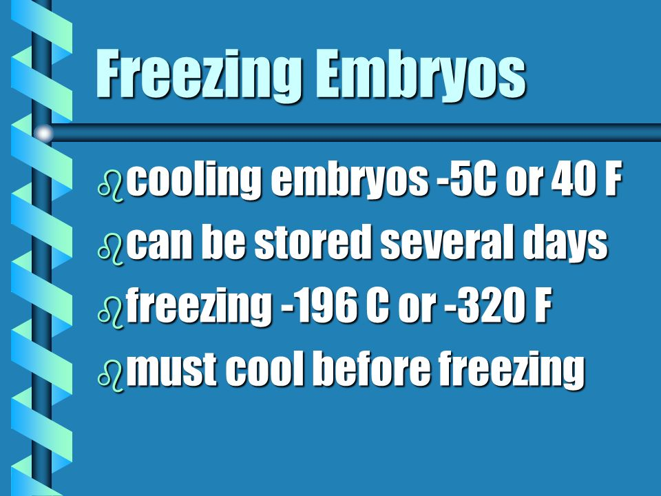 Freezing Embryos cooling embryos -5C or 40 F