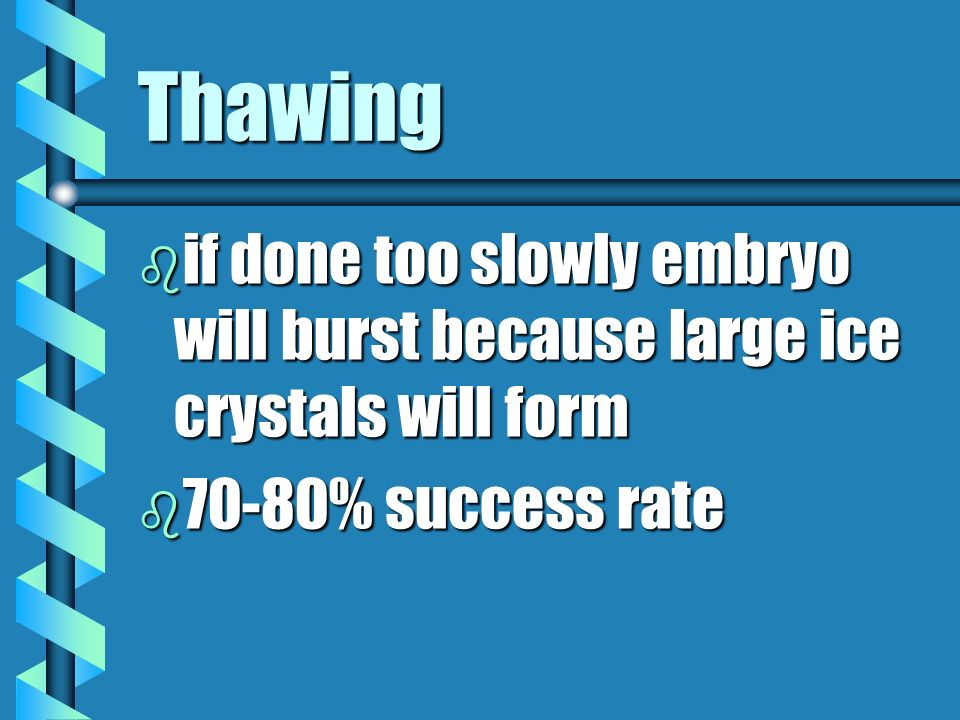 Thawing if done too slowly embryo will burst because large ice crystals will form.