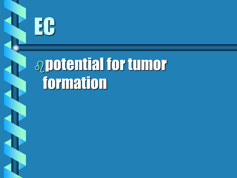 EC potential for tumor formation