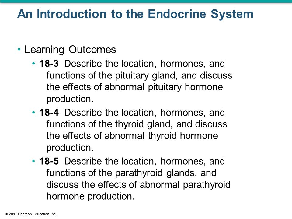 discuss the effects of hormones Estrogen and progesterone balance each other in the body here is a list of estrogen's effects on the body and the contrasting effects of progesterone.