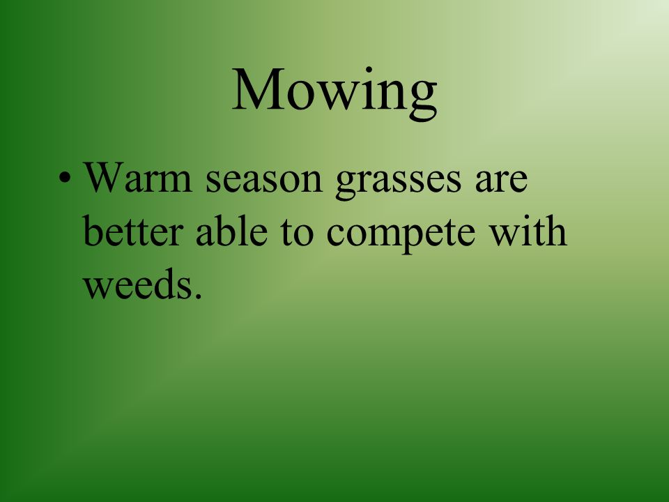 Mowing Warm season grasses are better able to compete with weeds.