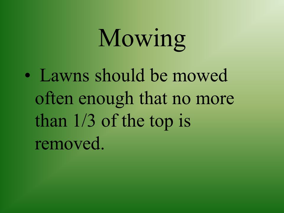 Mowing Lawns should be mowed often enough that no more than 1/3 of the top is removed.
