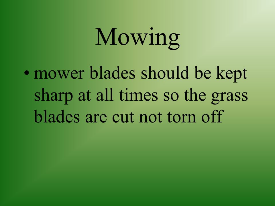 Mowing mower blades should be kept sharp at all times so the grass blades are cut not torn off