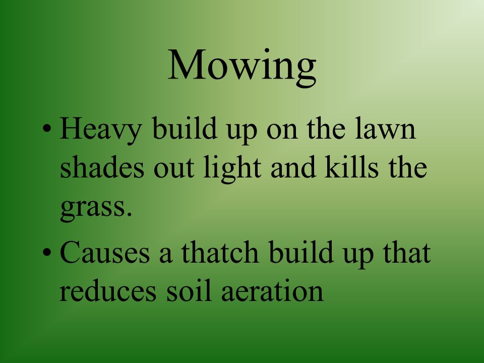 Mowing Heavy build up on the lawn shades out light and kills the grass.