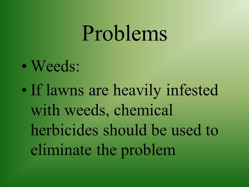 Problems Weeds: If lawns are heavily infested with weeds, chemical herbicides should be used to eliminate the problem.