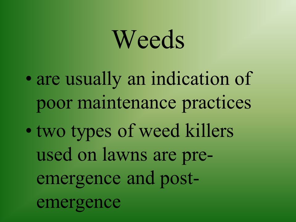 Weeds are usually an indication of poor maintenance practices