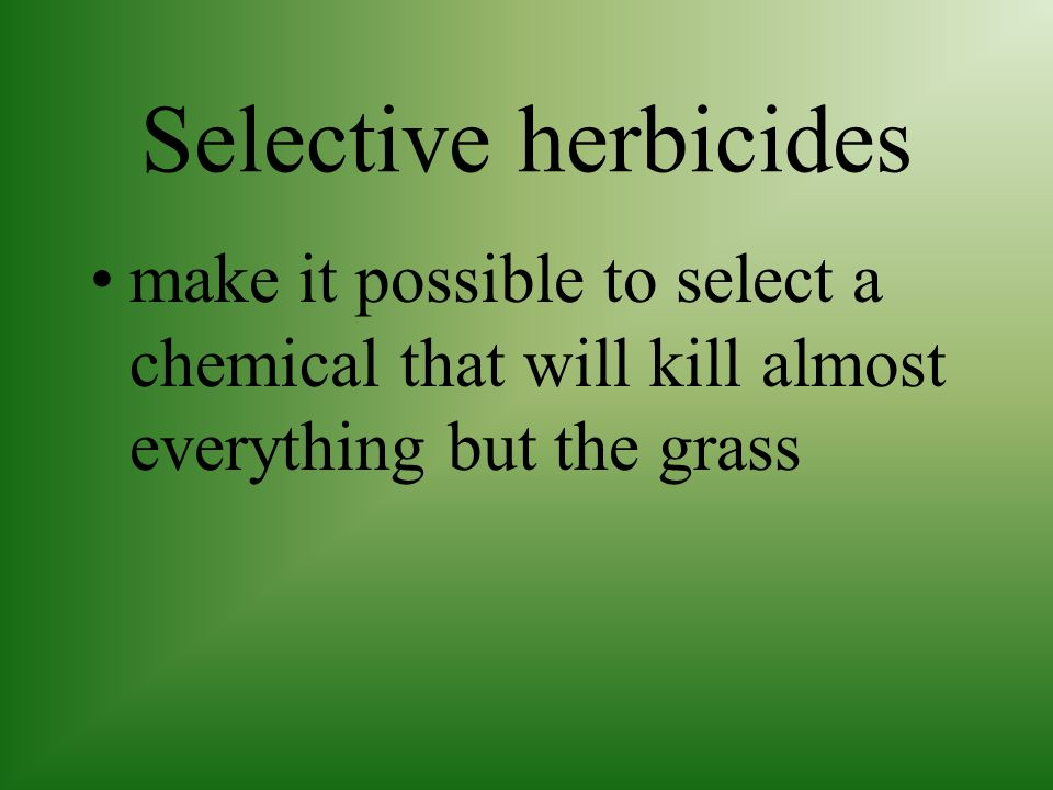 Selective herbicides make it possible to select a chemical that will kill almost everything but the grass.