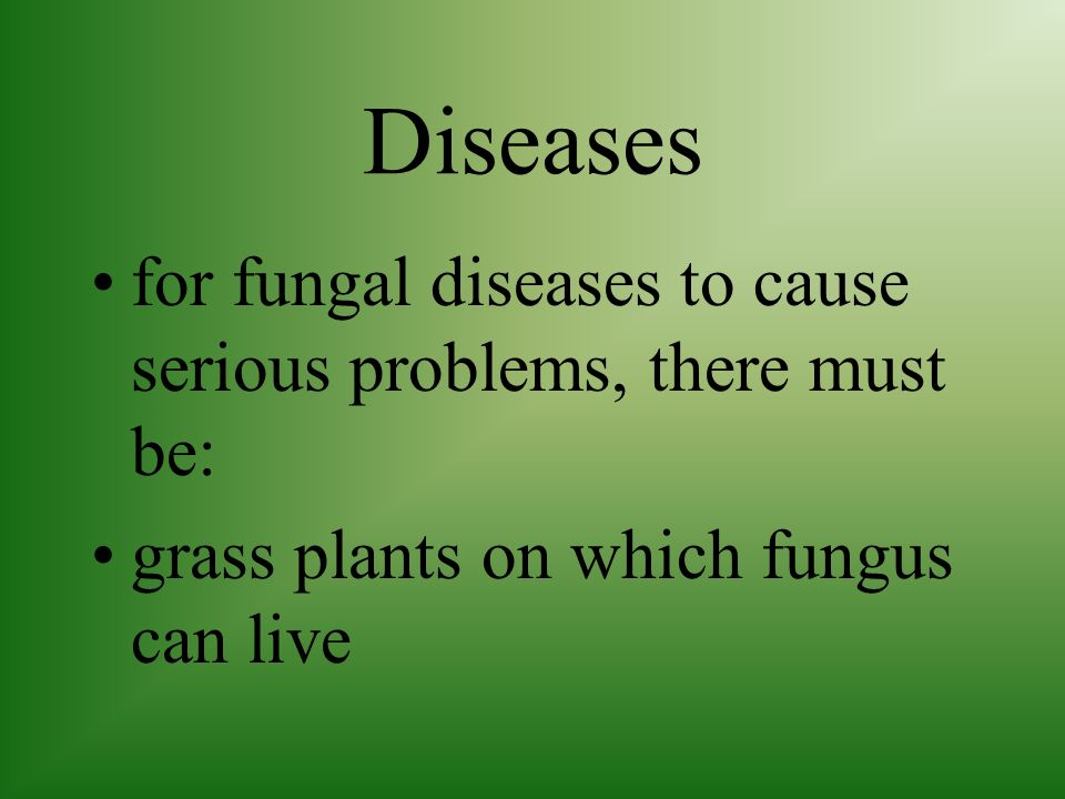 Diseases for fungal diseases to cause serious problems, there must be: