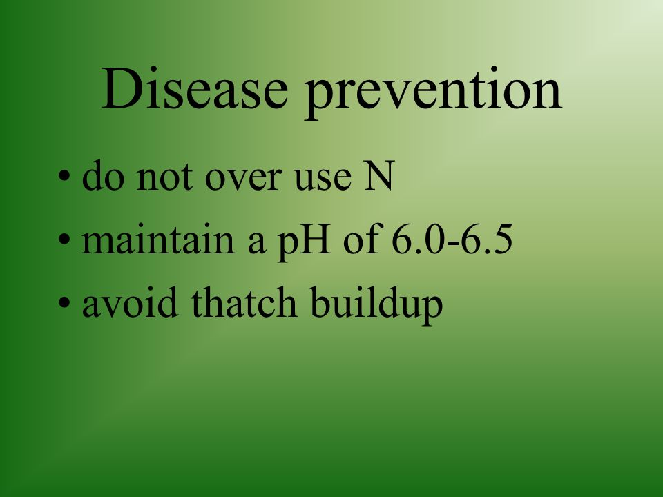 Disease prevention do not over use N maintain a pH of 6.0-6.5