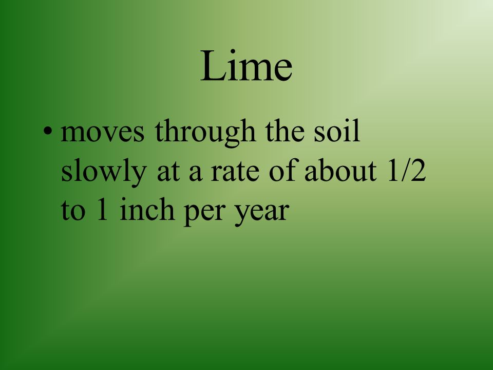 Lime moves through the soil slowly at a rate of about 1/2 to 1 inch per year