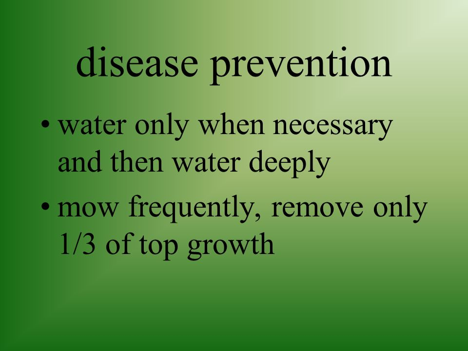 disease prevention water only when necessary and then water deeply