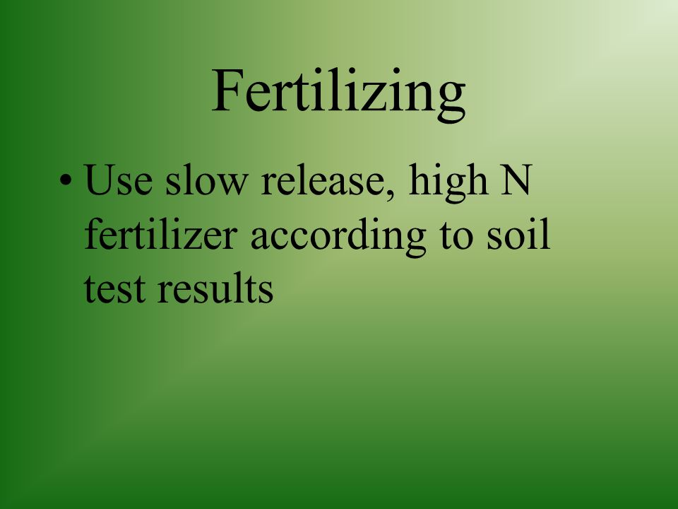 Fertilizing Use slow release, high N fertilizer according to soil test results