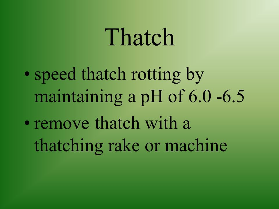 Thatch speed thatch rotting by maintaining a pH of 6.0 -6.5