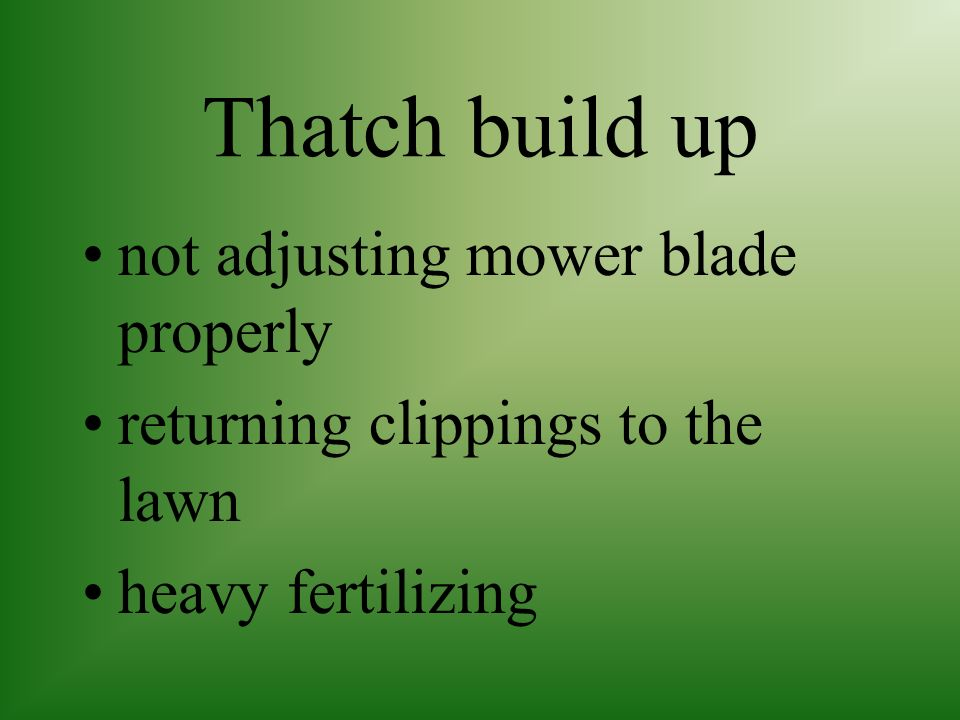 Thatch build up not adjusting mower blade properly