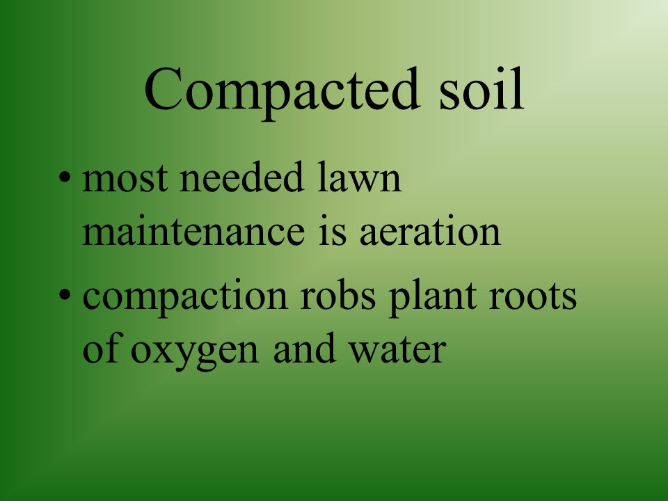 Compacted soil most needed lawn maintenance is aeration