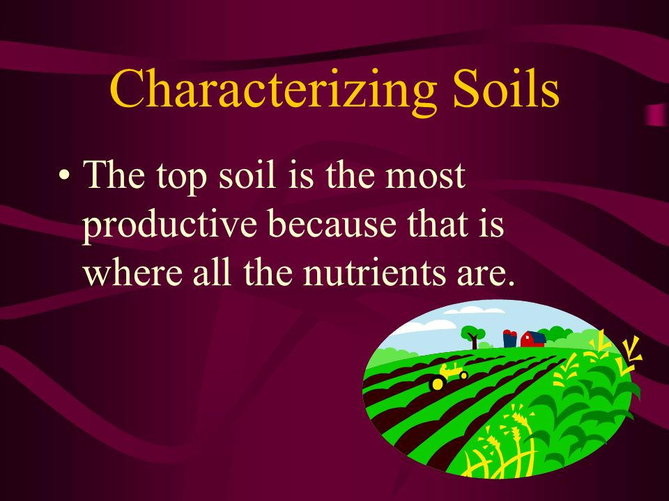 Characterizing Soils The top soil is the most productive because that is where all the nutrients are.