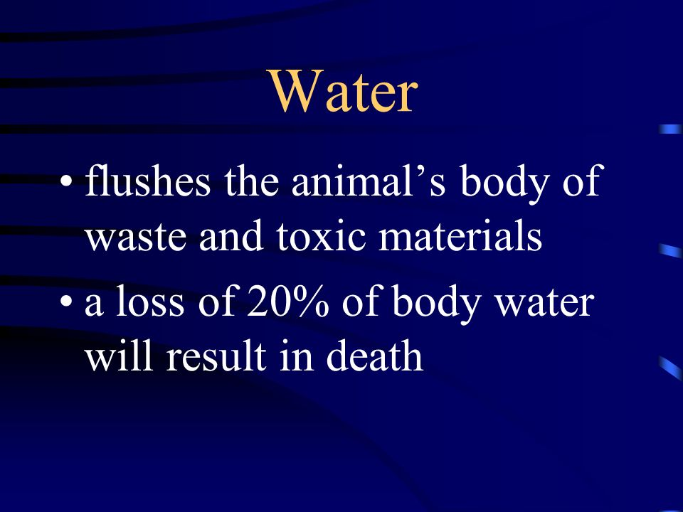 Water flushes the animal's body of waste and toxic materials