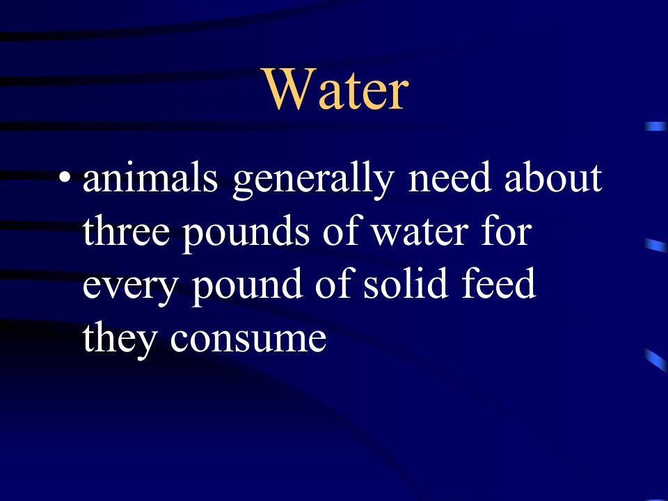 Water animals generally need about three pounds of water for every pound of solid feed they consume