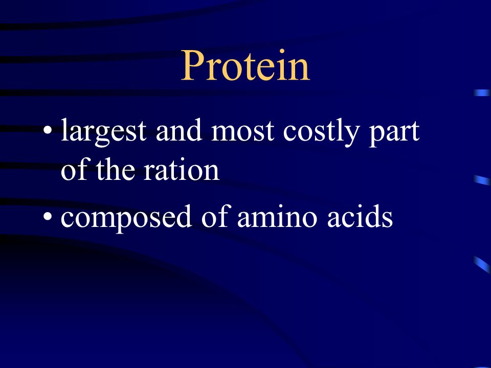 Protein largest and most costly part of the ration
