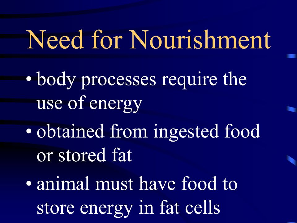 Need for Nourishment body processes require the use of energy