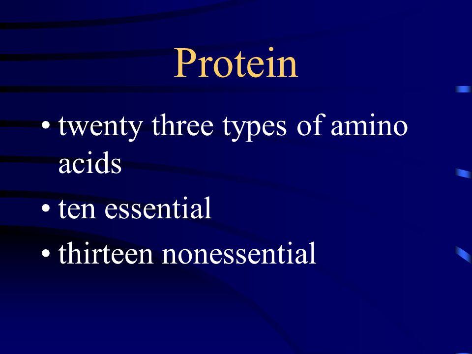 Protein twenty three types of amino acids ten essential