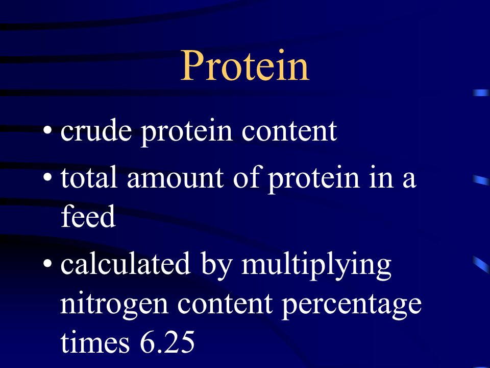 Protein crude protein content total amount of protein in a feed