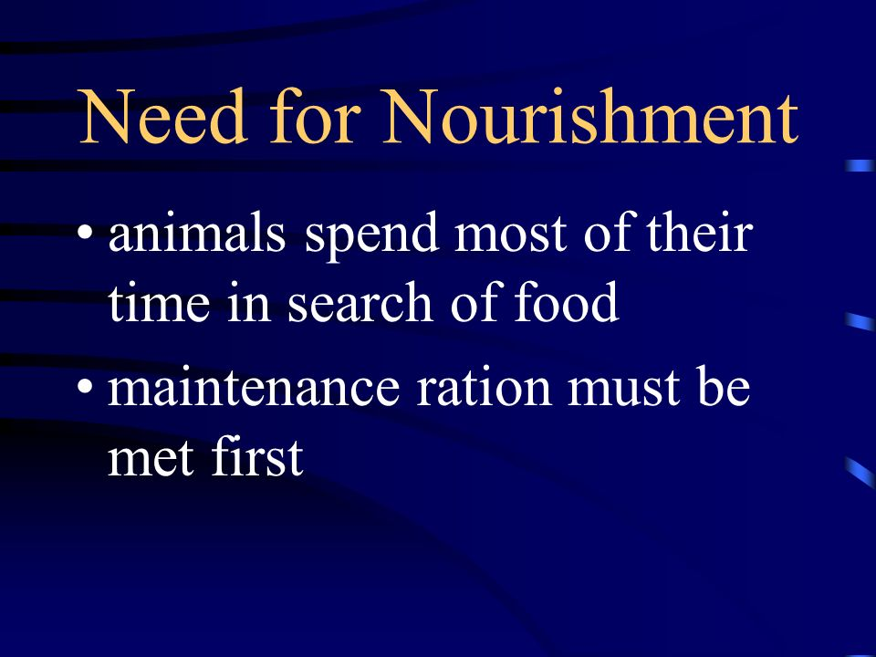 Need for Nourishment animals spend most of their time in search of food.