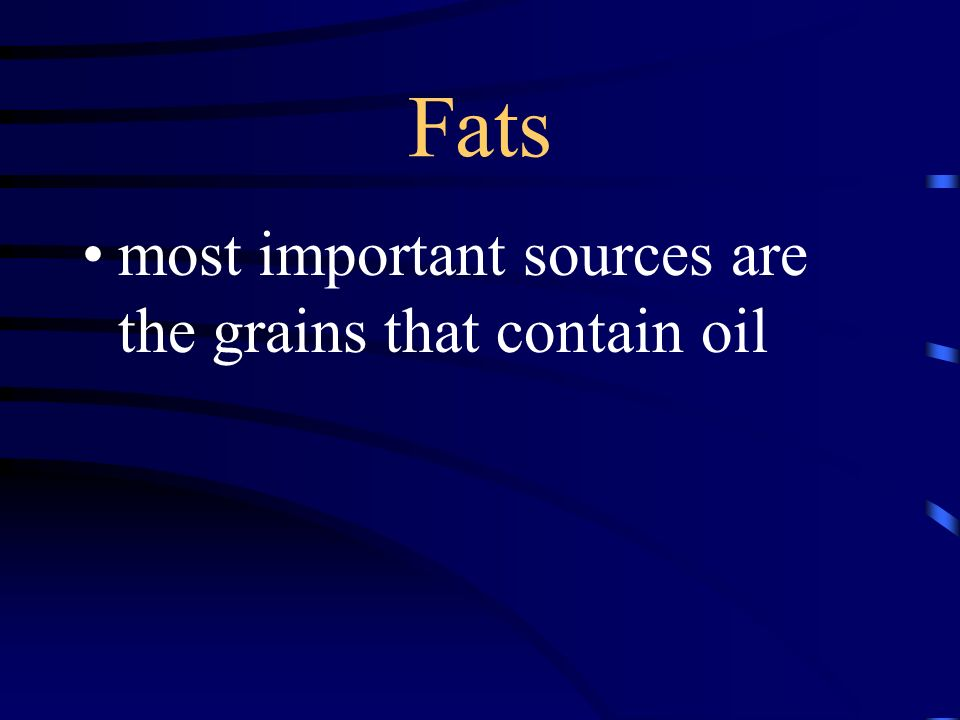 Fats most important sources are the grains that contain oil