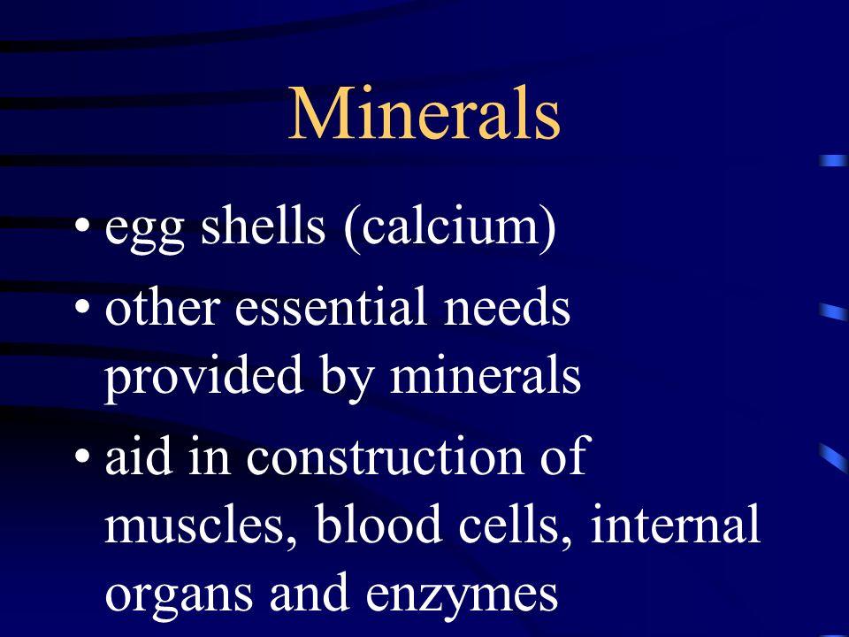 Minerals egg shells (calcium)