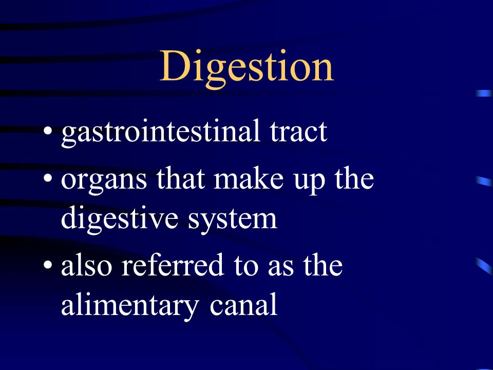 Digestion gastrointestinal tract