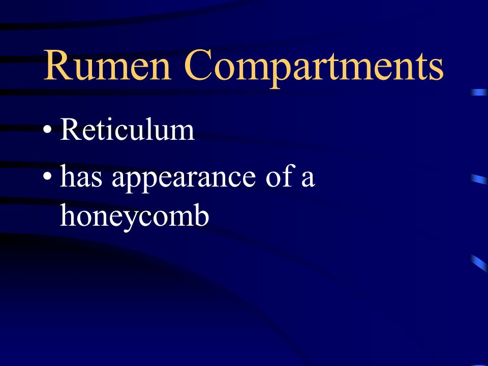 Rumen Compartments Reticulum has appearance of a honeycomb