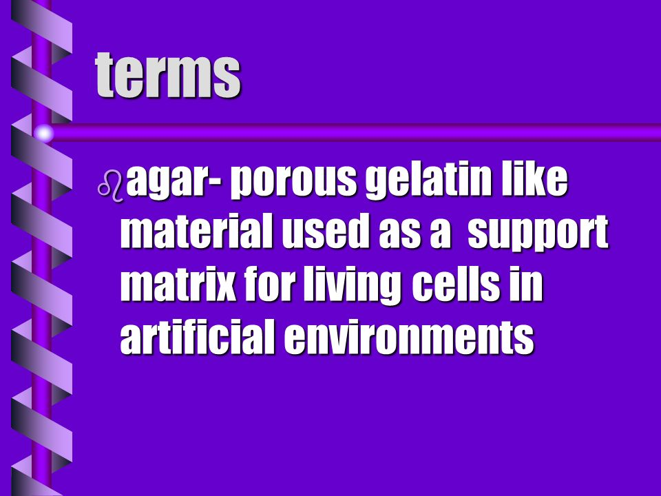 terms agar- porous gelatin like material used as a support matrix for living cells in artificial environments.