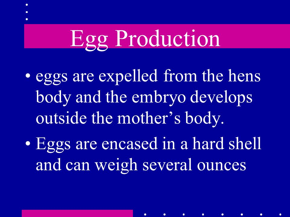 Egg Production eggs are expelled from the hens body and the embryo develops outside the mother's body.