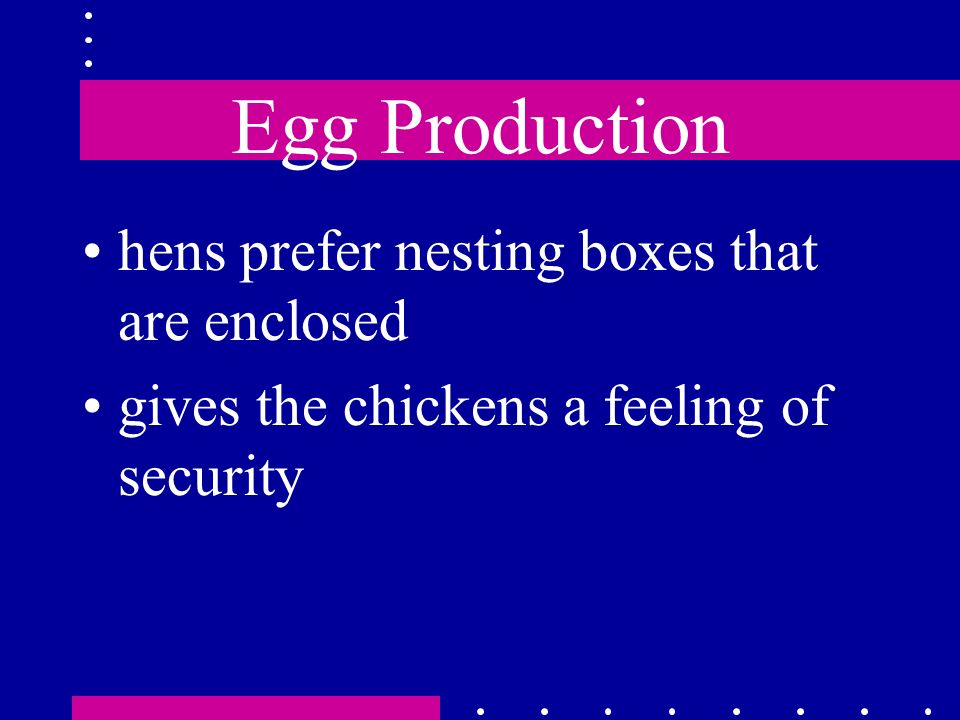 Egg Production hens prefer nesting boxes that are enclosed