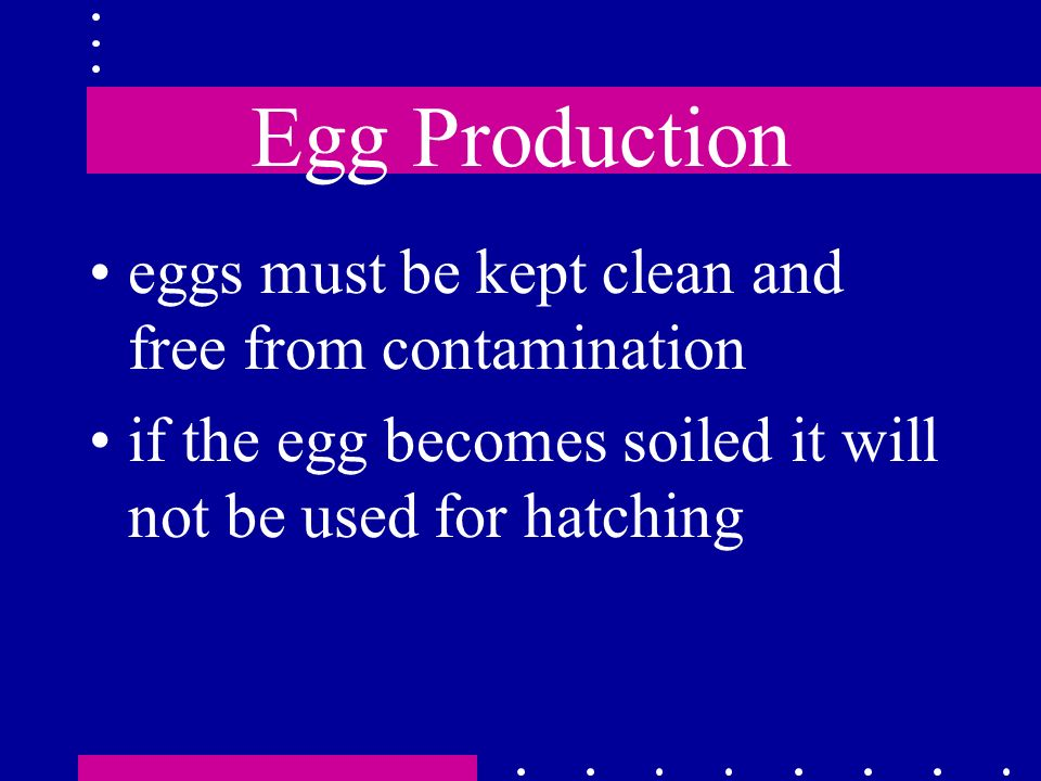 Egg Production eggs must be kept clean and free from contamination