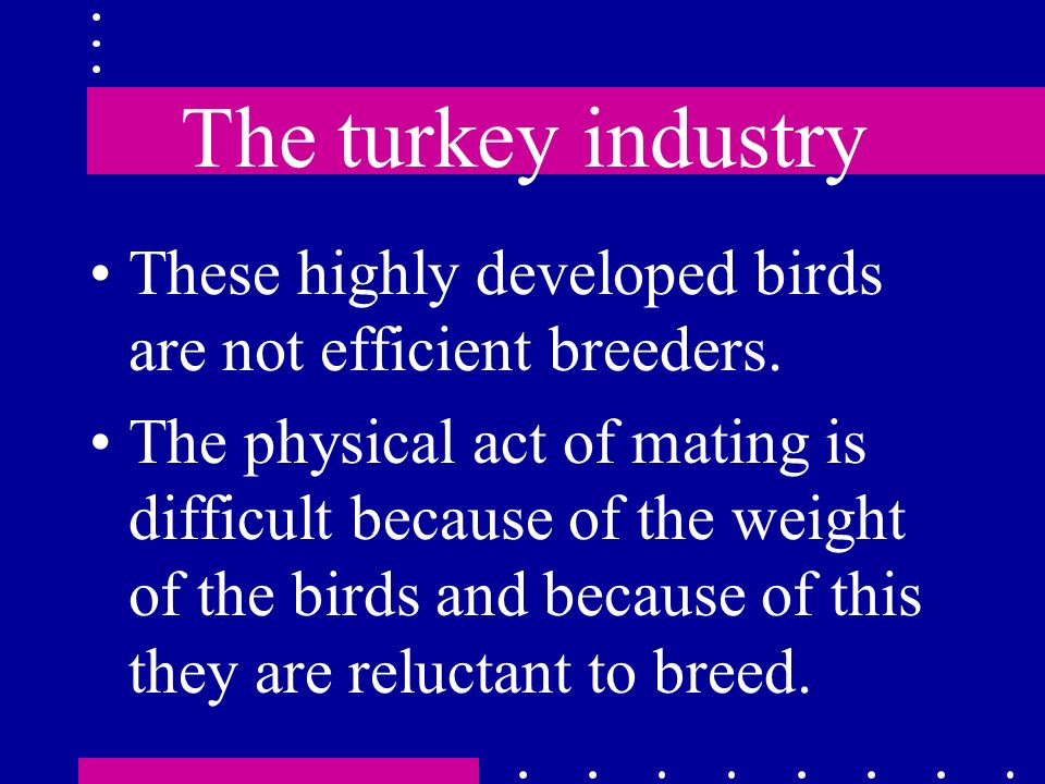 The turkey industry These highly developed birds are not efficient breeders.