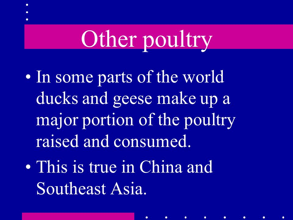 Other poultry In some parts of the world ducks and geese make up a major portion of the poultry raised and consumed.