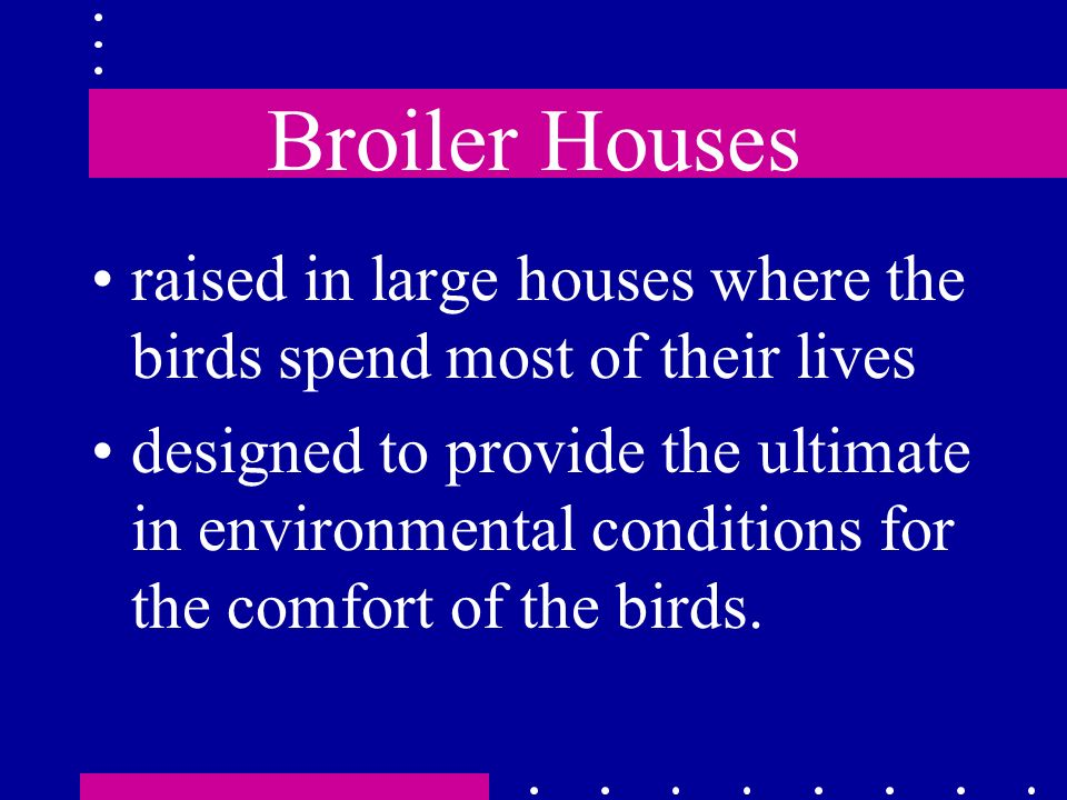 Broiler Houses raised in large houses where the birds spend most of their lives.