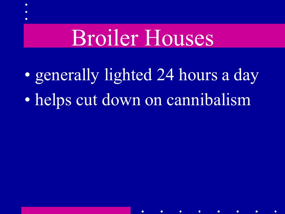Broiler Houses generally lighted 24 hours a day