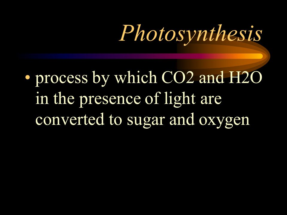 Photosynthesis process by which CO2 and H2O in the presence of light are converted to sugar and oxygen.