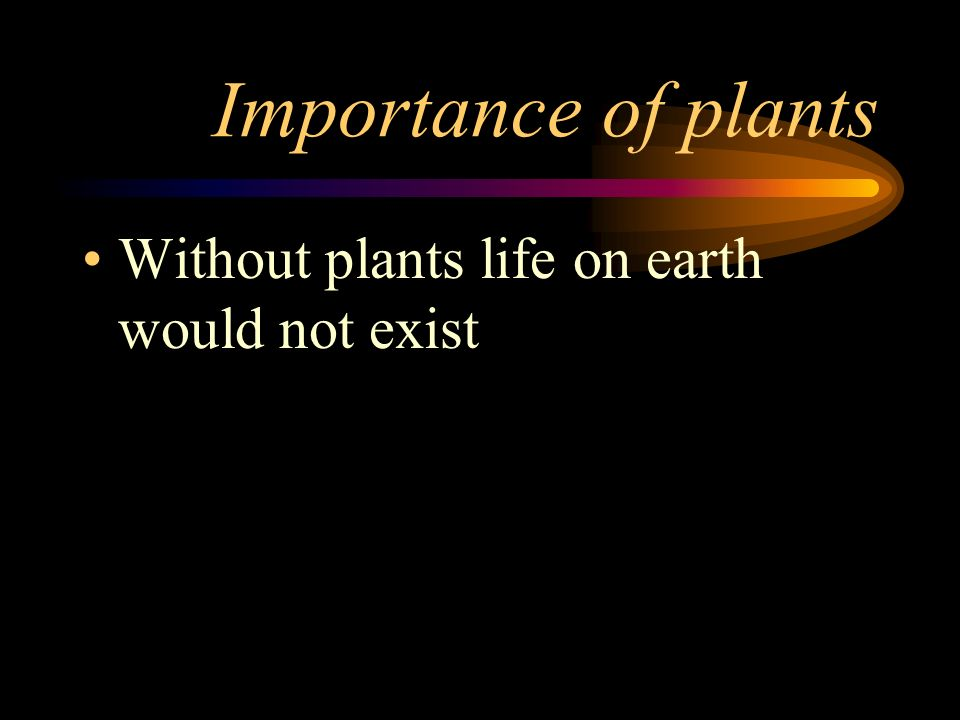 Importance of plants Without plants life on earth would not exist