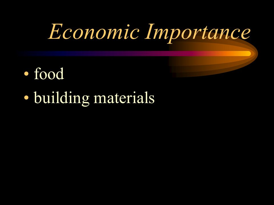 Economic Importance food building materials