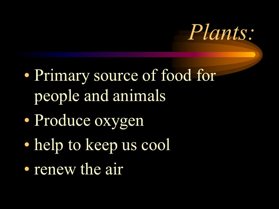Plants: Primary source of food for people and animals Produce oxygen