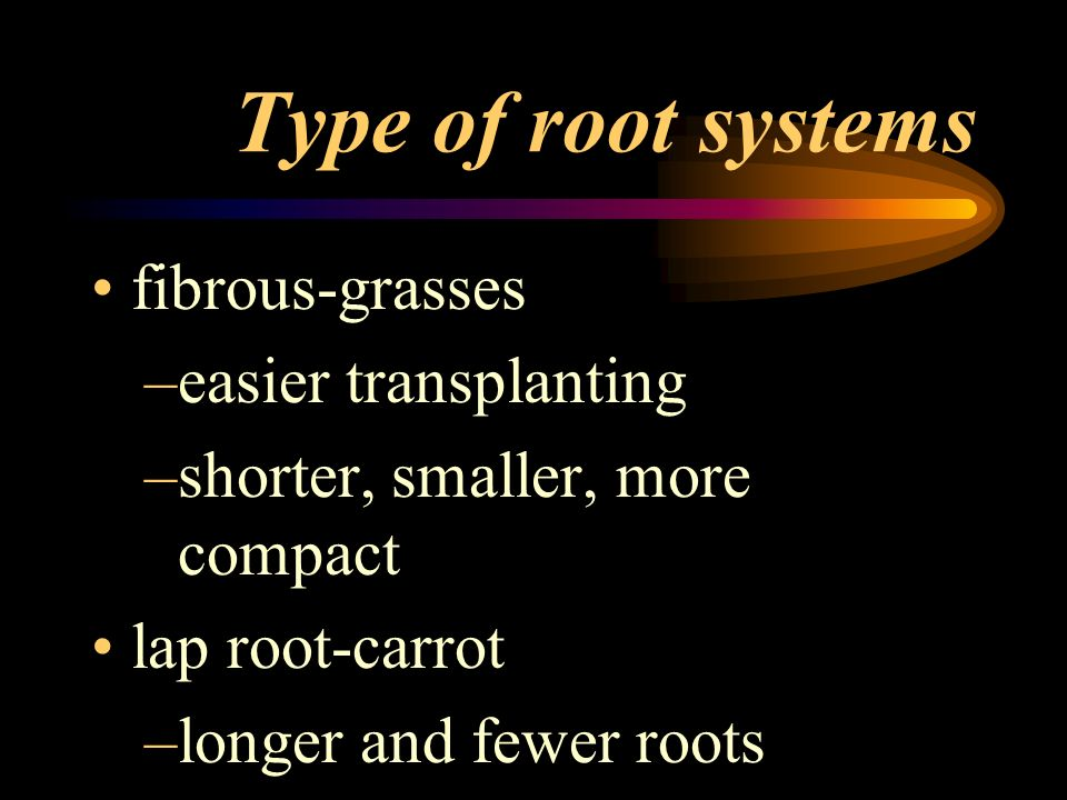 Type of root systems fibrous-grasses easier transplanting