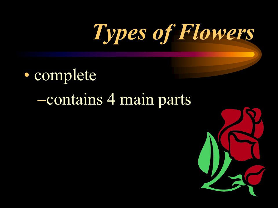 Types of Flowers complete contains 4 main parts
