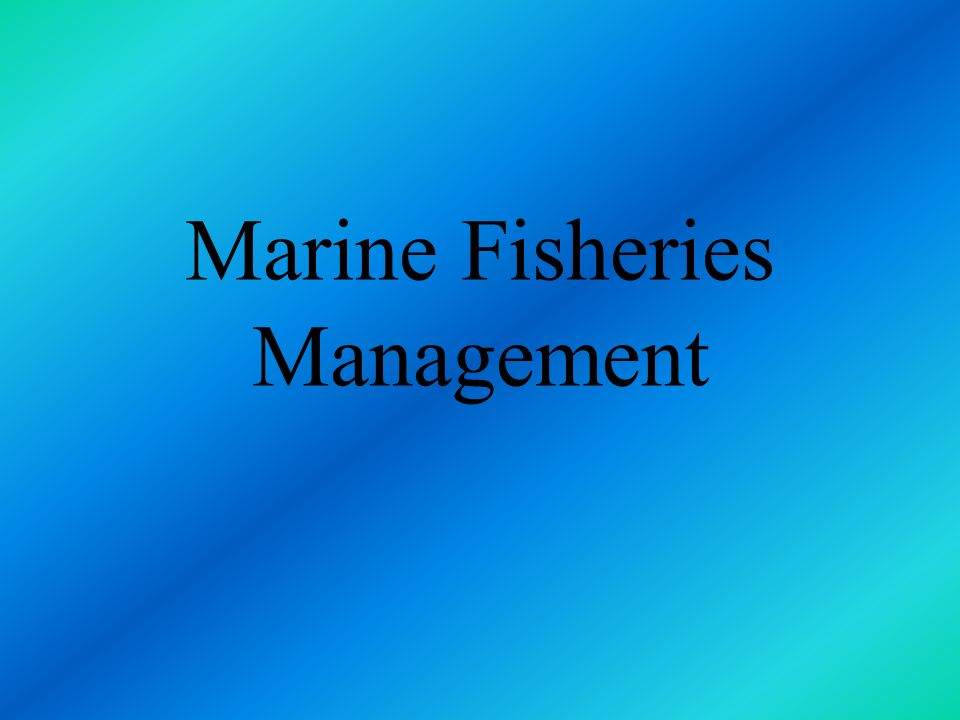 Marine Fisheries Management