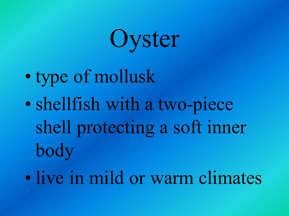 Oyster type of mollusk. shellfish with a two-piece shell protecting a soft inner body.